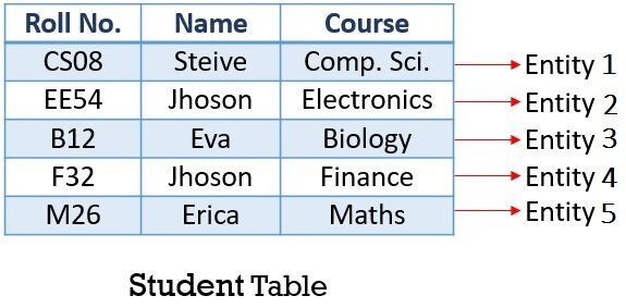 Entity in student table