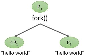 fork() and exec()